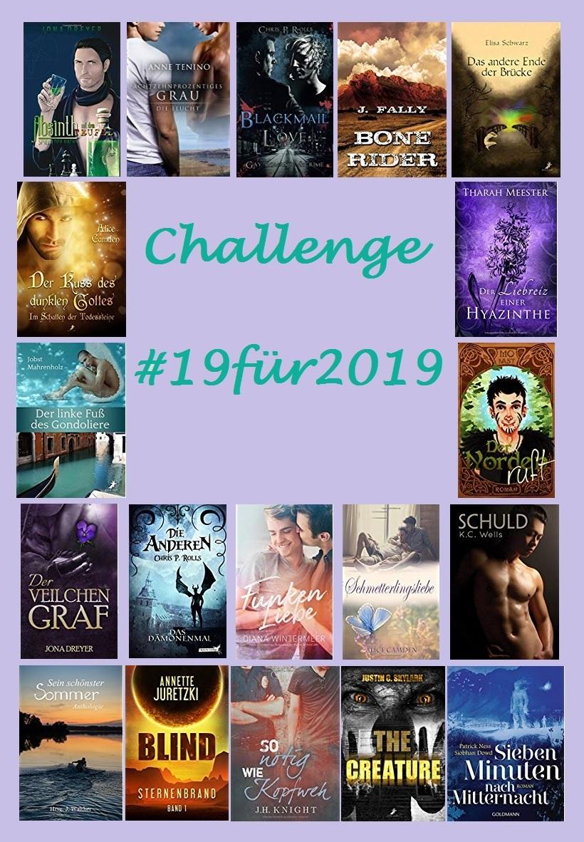 Sub-Challenge #19für2019